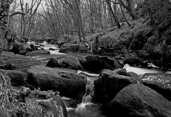 Golitha Falls 2 of 4
