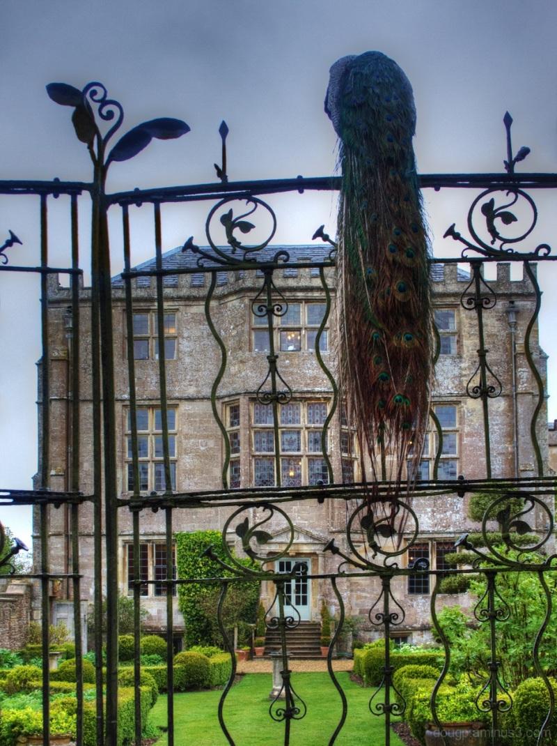 Tudor Newark House