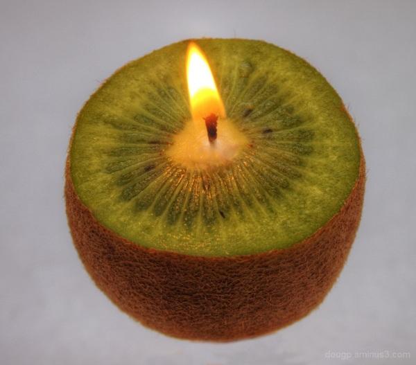 Flaming Kiwifruit
