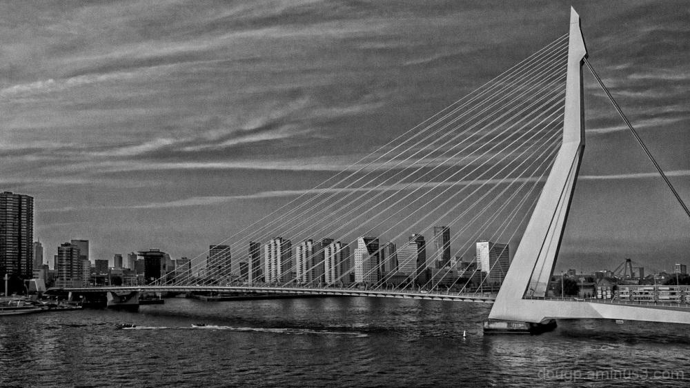 Rotterdam evening 2