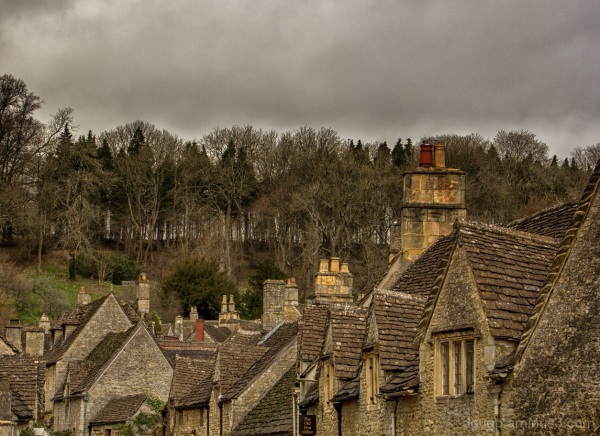 Rooftops, chimneys and treetops