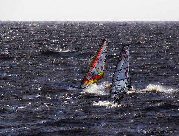 Pair of windsurfers