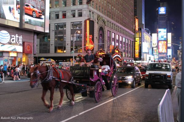 Carriage rides at Times Square