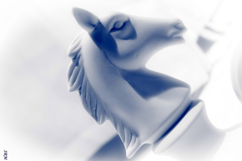 Sculpture+horse+white+black