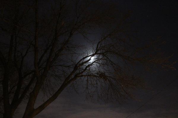 Night Sky at 3 am