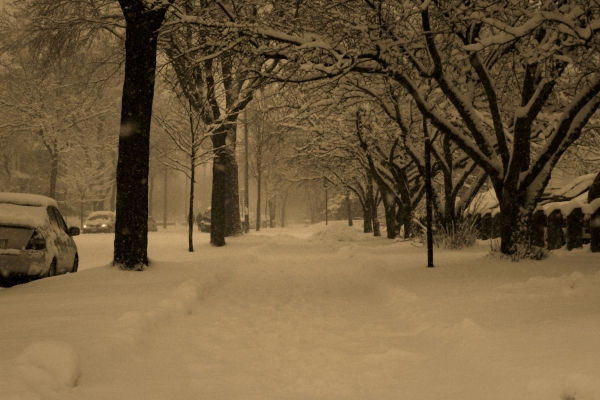 Footpath under snow cover