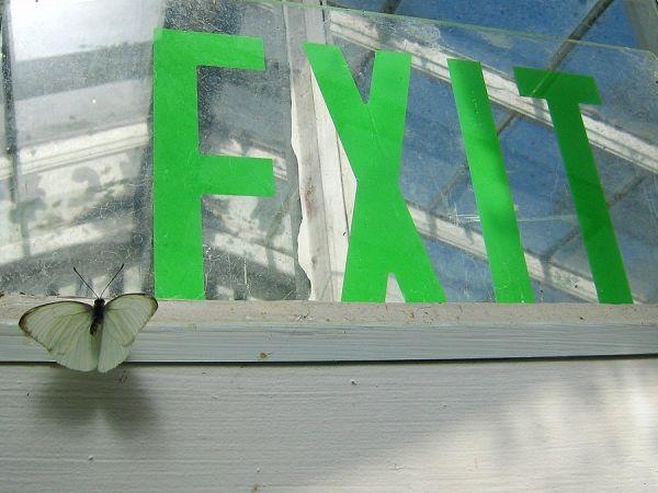 NO Exit ?!!