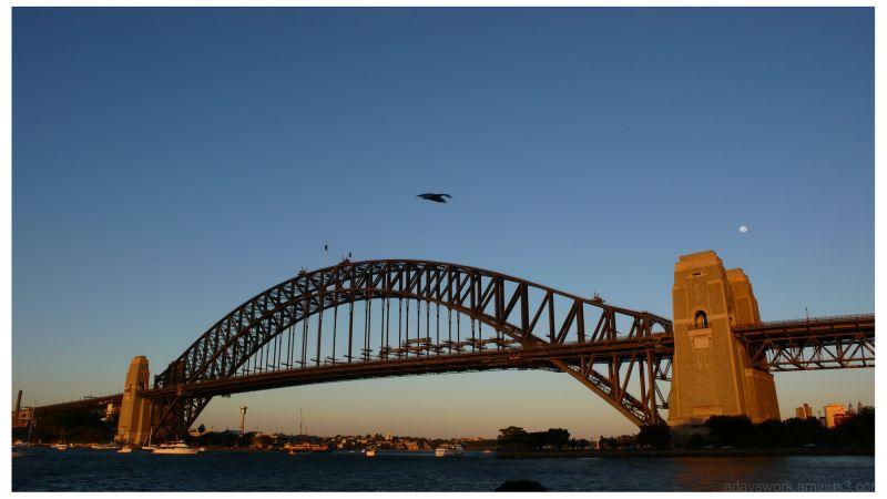 Sydney Harbor Bridge in the Morning