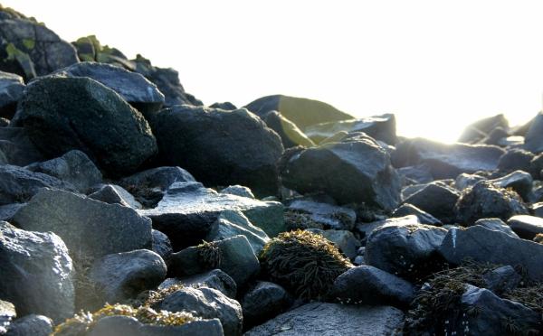 Rocks and Light
