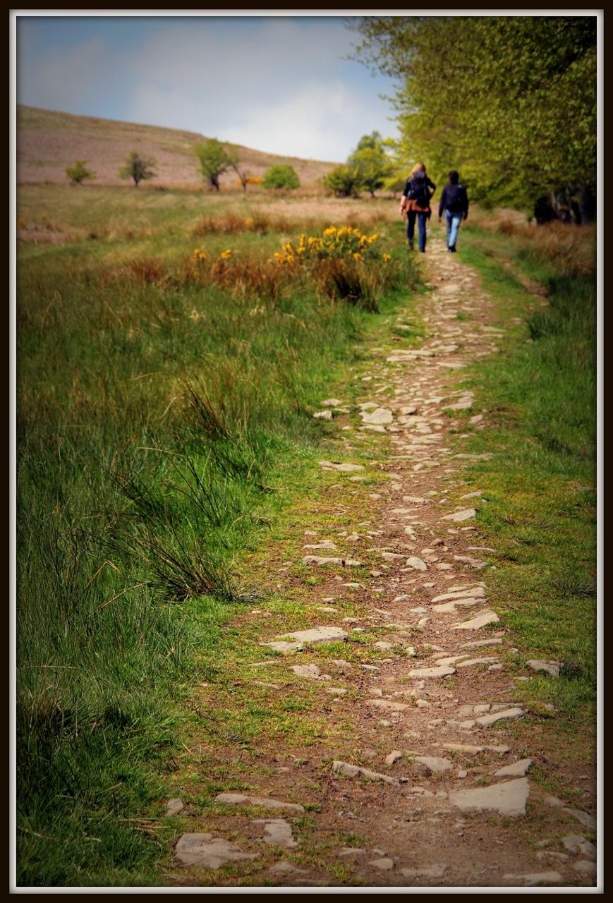 Loch Lomond Hiking Trail