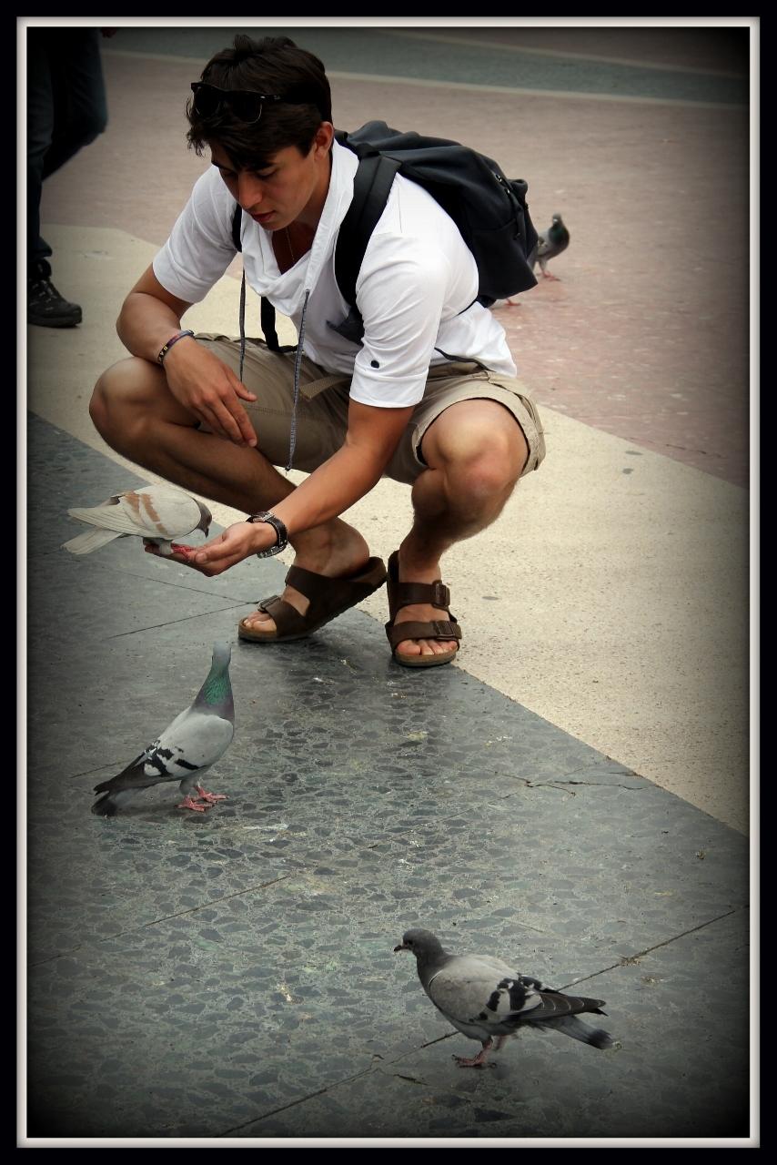 Feeding the Birds Barcelona, Spain