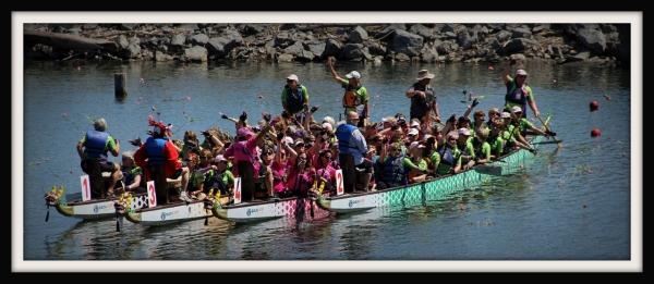 Buffalo Dragon Boat Races