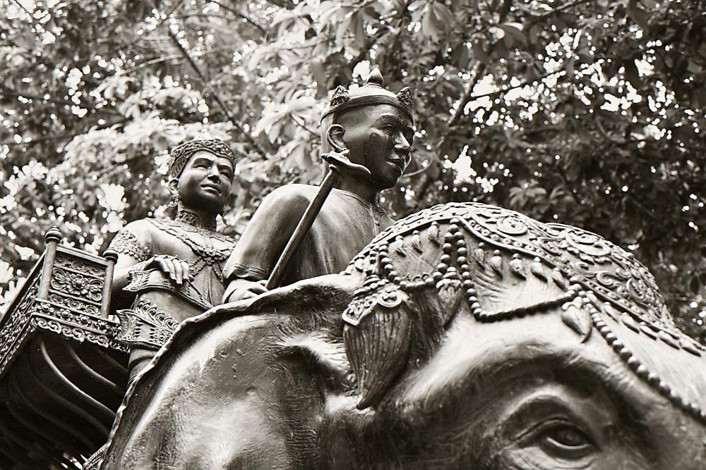 riding the elephant