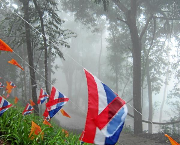 colorful mist