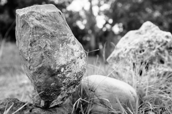 stones faces iii