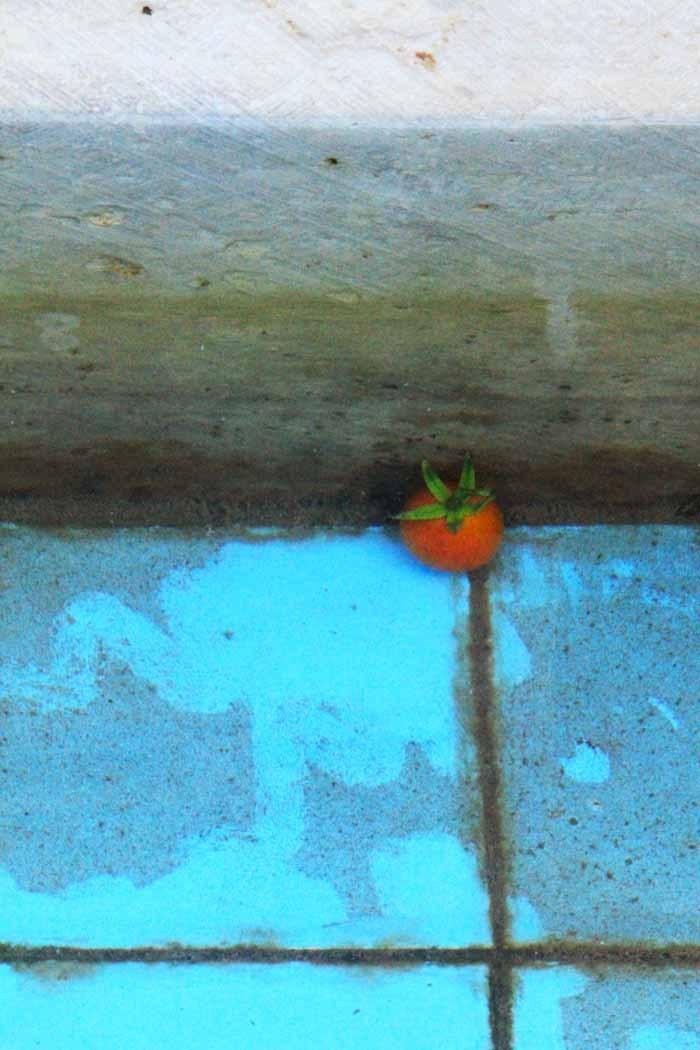 حوض نقاشی