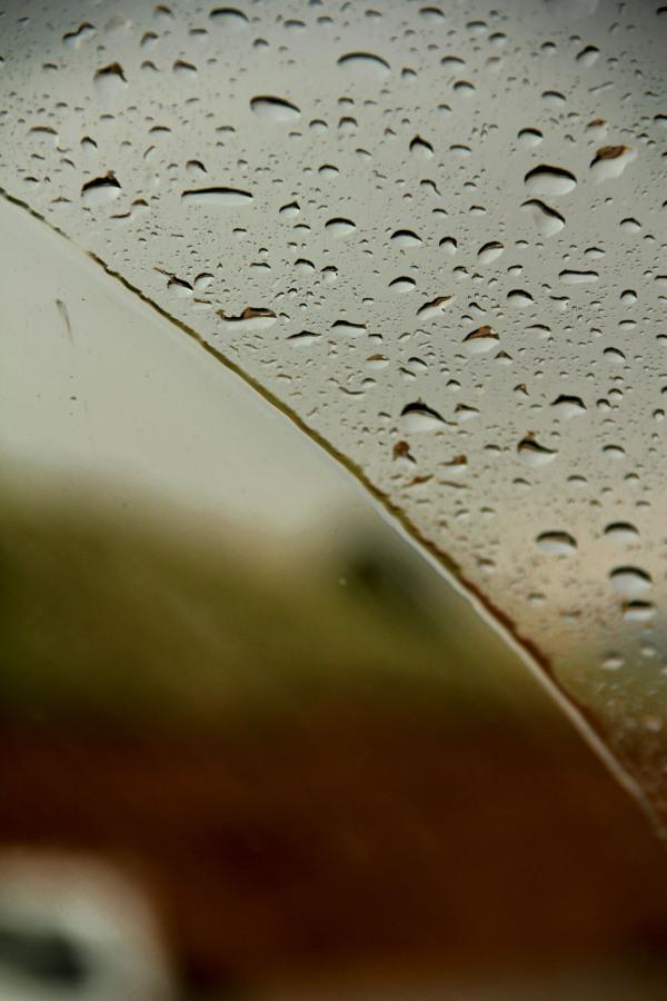 Moist glass, moist heart
