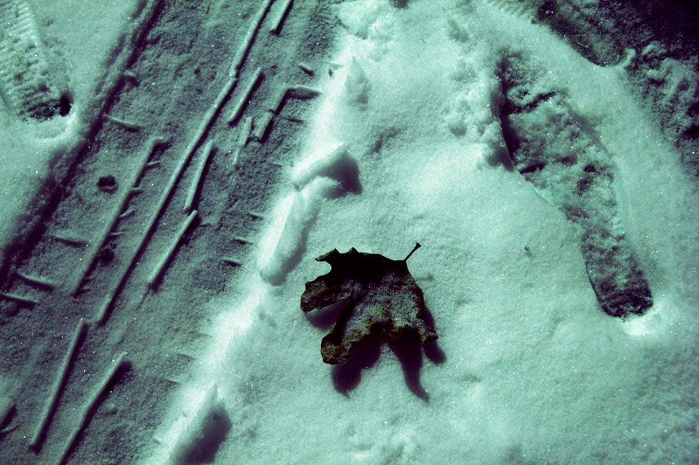 Winter Is Purple / II