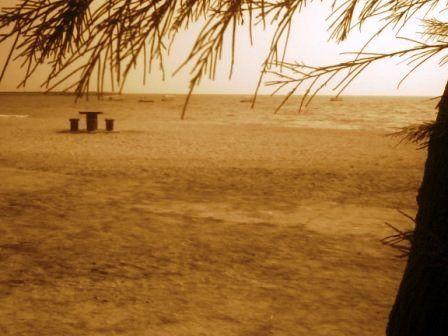 بی تو ،خالی از..صداست ،دریا