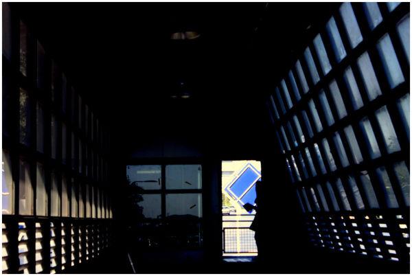the whom...in my heart ...under sun...inside train