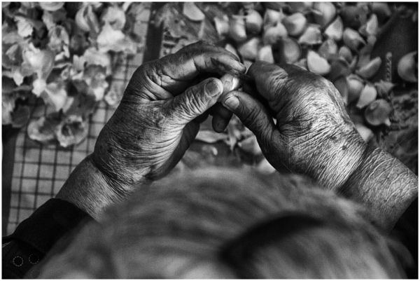 Grandmother's hands