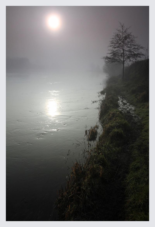 River Fog #2