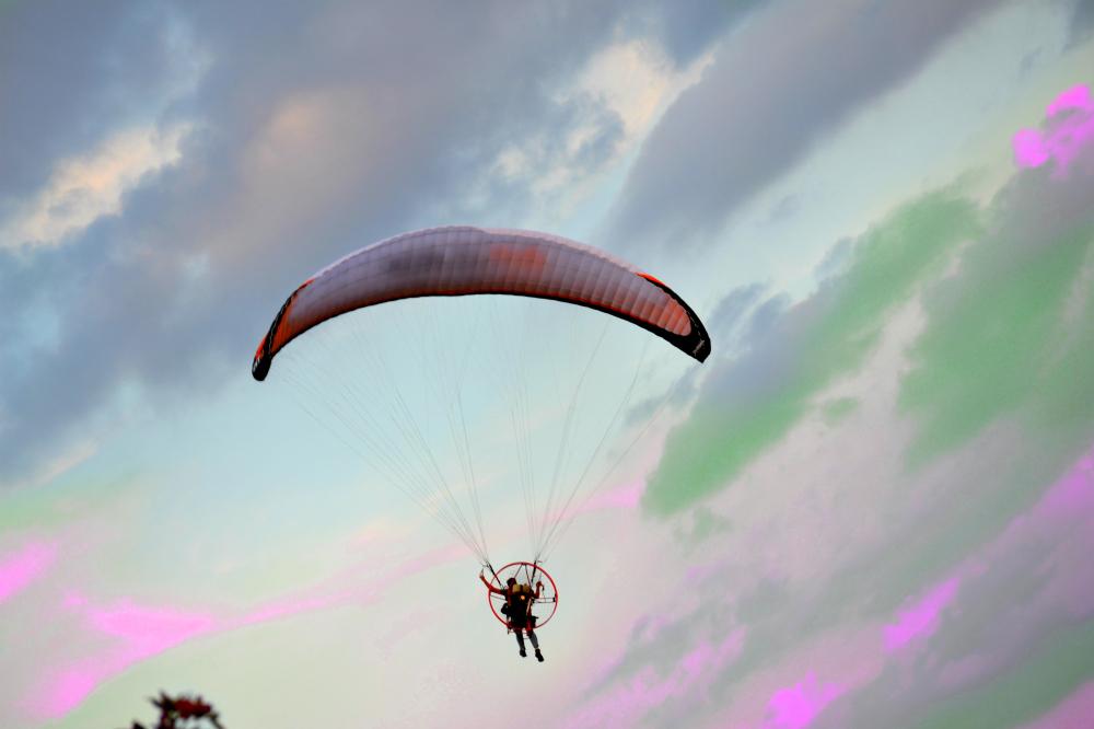 Fly high in a purple sky