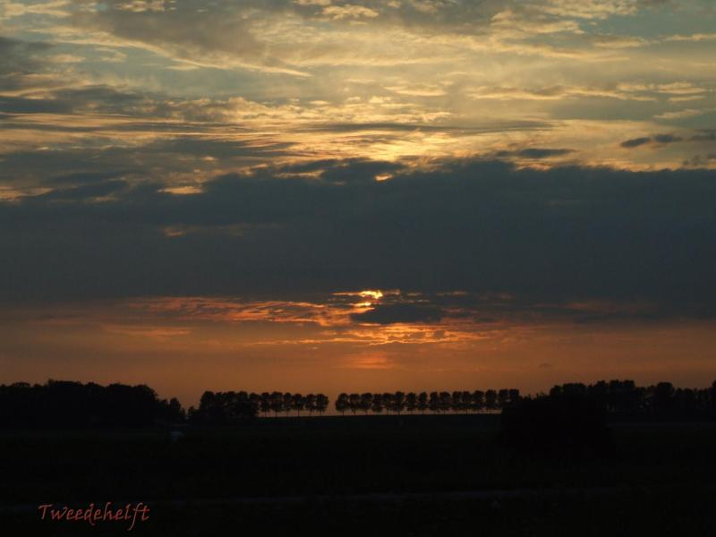 lemmer skyline