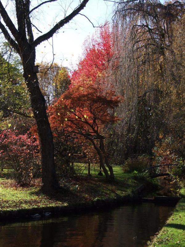 cantonspark herfst