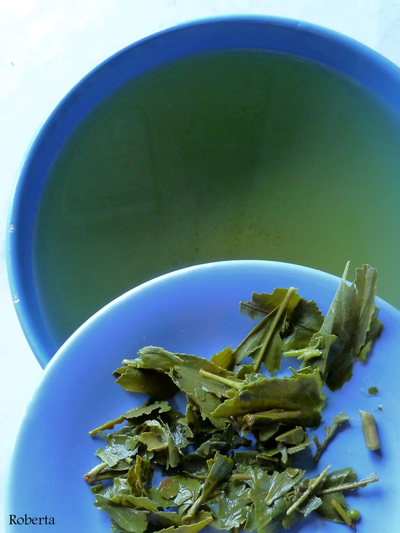 Leaves of Bancha green tea