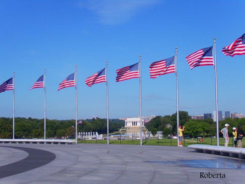 American Pride - U.S.A. IX