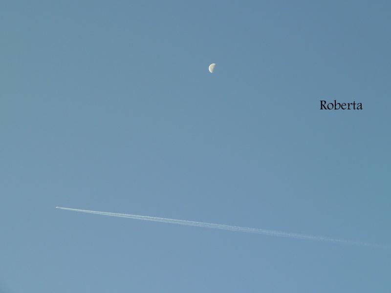 The blue blue sky