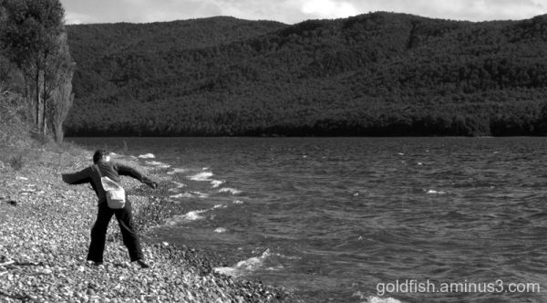 "Te Anau - Fiordland 2/6 - ""Skimming Stones"""