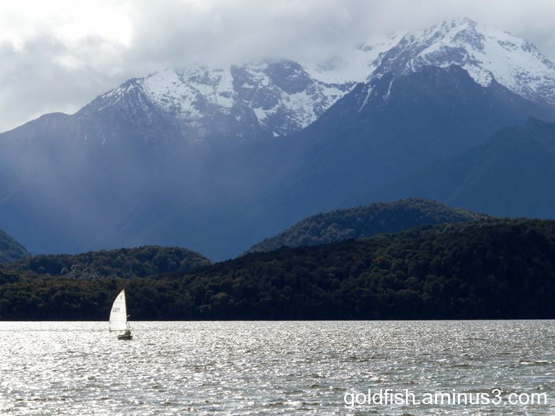 "Te Anau - Fiordland 3/6 - ""Sailing"""