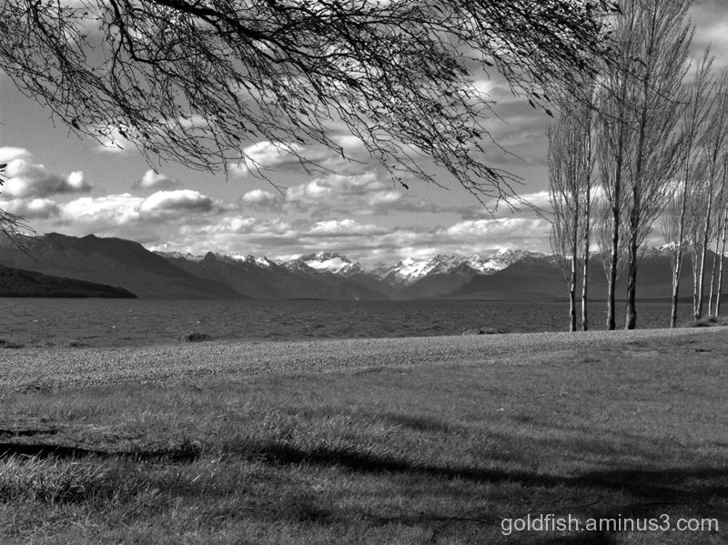 "Te Anau - Fiordland 4/6 - ""Looking North"""