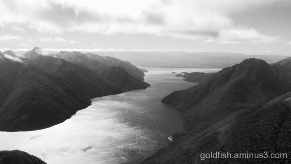 "Te Anau - Fiordland 6/6 - ""South Fiord"""
