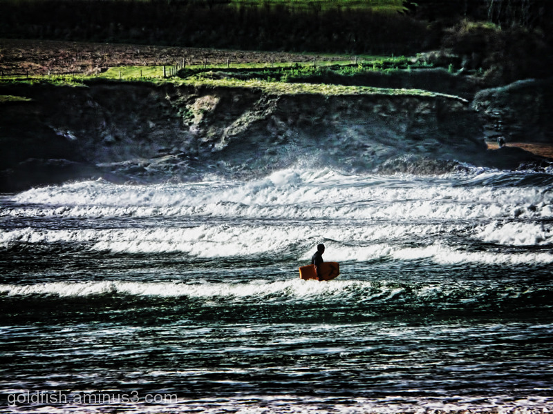 The Bodyboarder