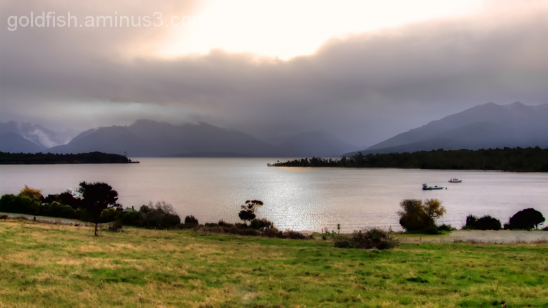 Road to Milford 1/14 - Te Anau Downs