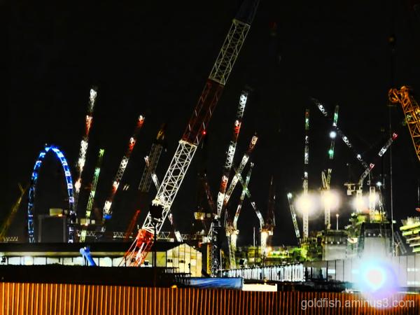 The Cranes Of Singapore 2/4