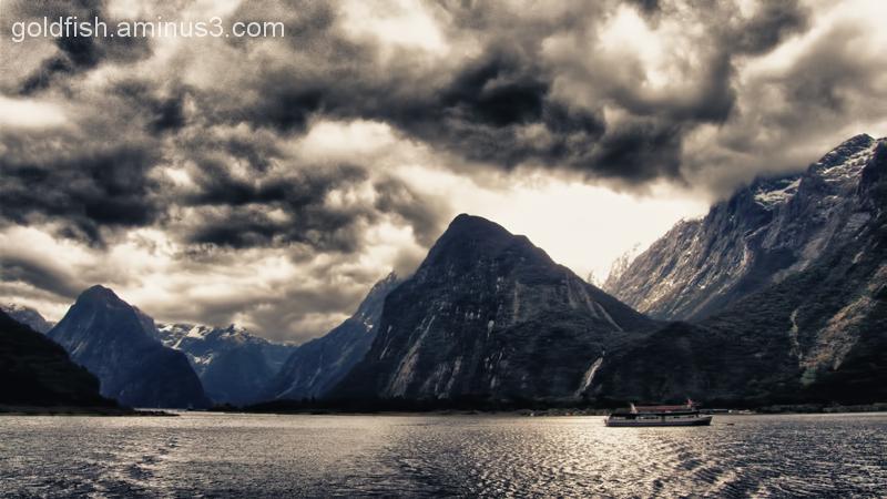 Piopiotahi - Milford Sound 1/18