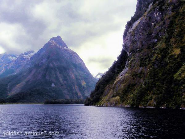 Piopiotahi - Milford Sound 2/18