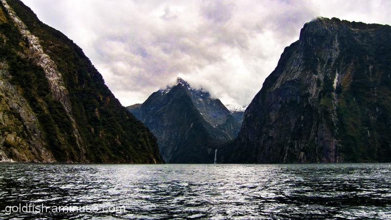 Piopiotahi - Milford Sound 3/18