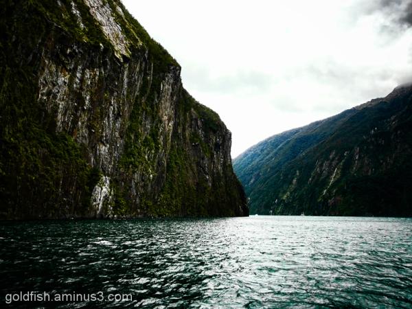 Piopiotahi - Milford Sound 6/18