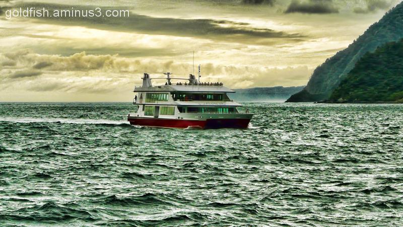 Piopiotahi - Milford Sound 8/18