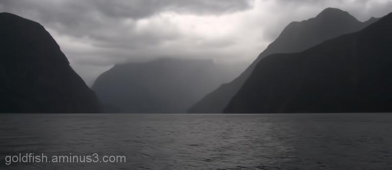 Piopiotahi - Milford Sound 13/18