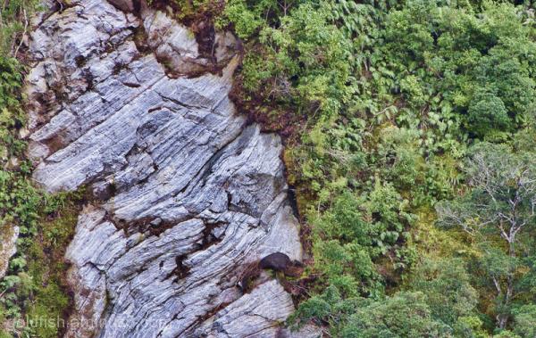 Piopiotahi - Milford Sound 14/18