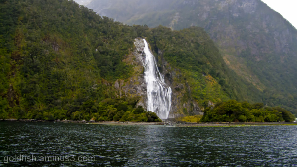 Piopiotahi - Milford Sound 17/18
