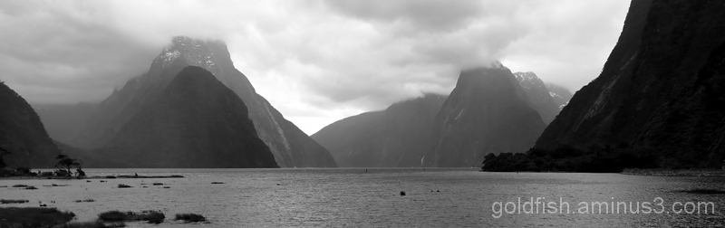 Piopiotahi - Milford Sound 18/18