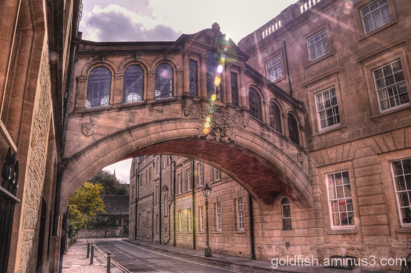Oxford 2/11 - Hertford Bridge (Bridge of Sighs)