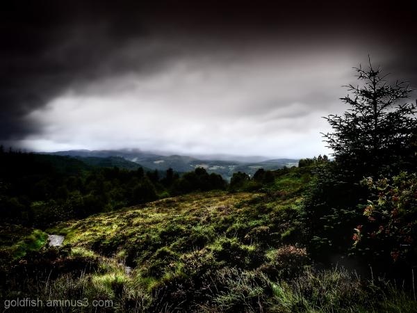 View From Llyn Elsi Walk